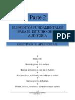 p2 Elementos Fundamentales Auditoria CMV