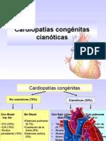 Cardiopatiìas congeìnitas cianoìticas