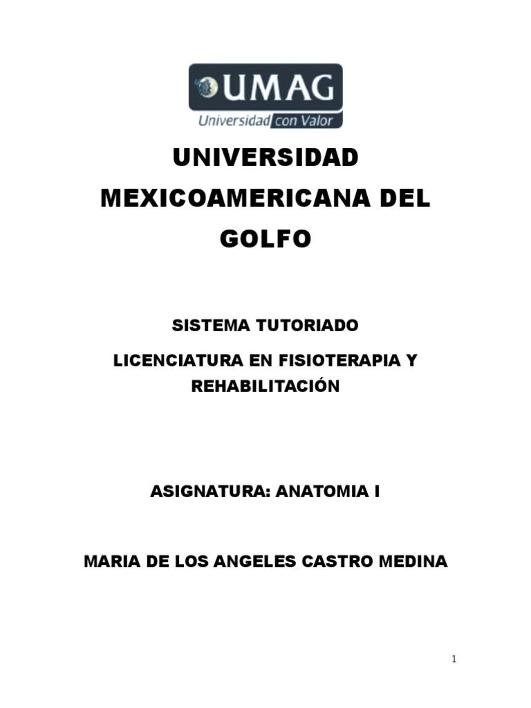 2.1 ANATOMIA I.docx