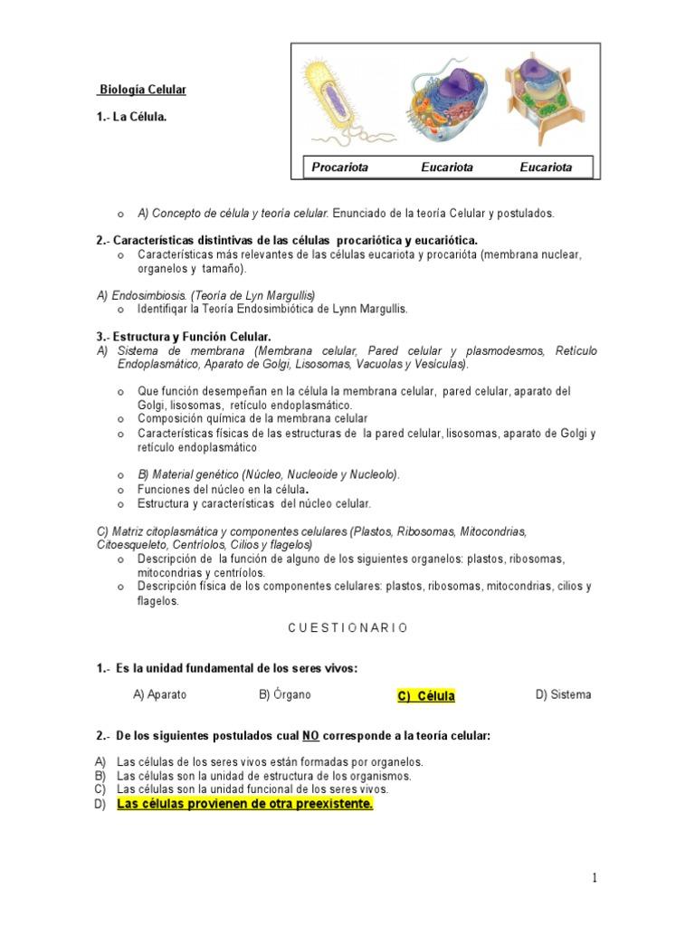 Guia Parte 1 Citoplasma Célula Biología