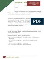 Direccion de Proyectos (1)
