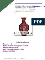 Ejemplos de historia clinica en nefrología