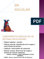 Fisiologia Cardiovascular Didactico