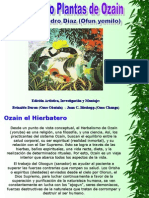 Tratado Plantas de ozain.ppt