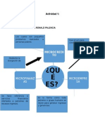 Act 1 Microfinanzas