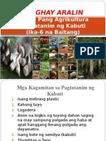 PPT Demo educ