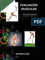 Evaluacion Muscular