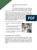 Las Torres Gemelas historia analisis
