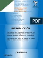 Objetivos de La Inv.