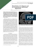 Epidural Blood Patch at C2.pdf