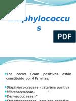 Clase v. Estafilococos 14