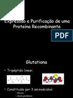 Proteína Recombinate_MTBM