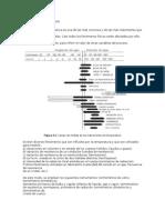 Trabajo Instrumentacion - Medicion Temperatura