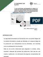 Desarrollo de Sistema Informático Para La Determinación de Adulteración Por Almidón en Queso Fresco Basado en La Tecnología de Imágenes Hiperespectrales
