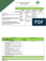 Formato Para La Documentación Del Plan de Cuidados