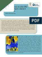 Bacterias Reductoras Sulfato Muriel Gonzalez