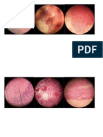 print cell injury.docx