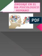 El Lenguaje en El Sistema Psicologico Humano-diapositiva