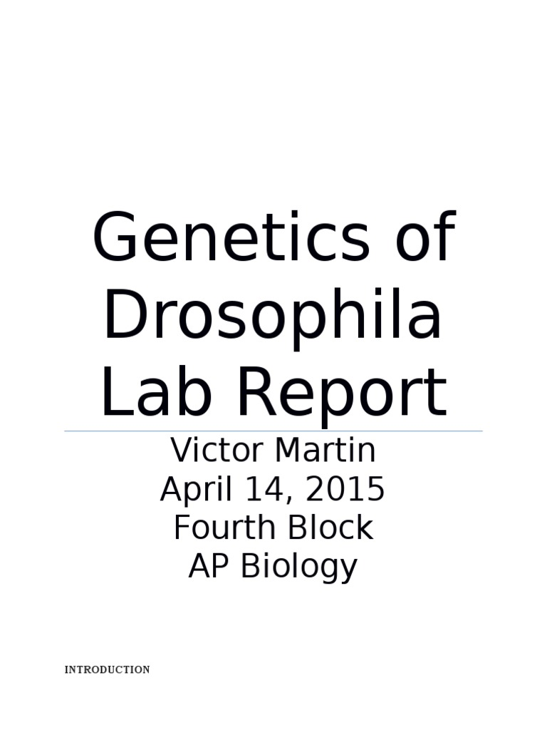 drosophila genetics lab report  drosophila genetics lab report