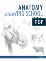 Anatomy Drawing School Animal