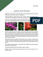 Portofoliu Stiinte_plantele de la Ecuator