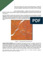 rocas ornamentales.pdf