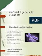 0 Materialul Genetic La Eucariote
