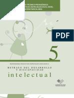 Guía de Apoyo Téc. Pedagógico Retraso-del-Desarrollo-y-Discapacidad-Intelectual