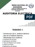 Audit. Electrica