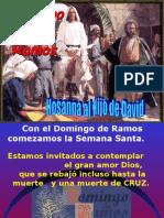 Domingo Ramos 2010