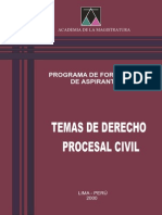 Temas Dere Proce Civil