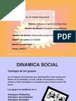 Presentación1 proyecto 1