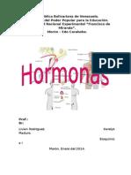 Informe de Hormonas