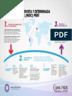 Infografia iNDC Perú