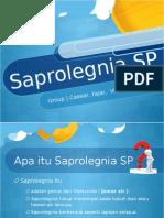 Dasmik SaprolegniaSP