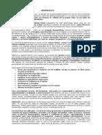 bioenergetica resumen