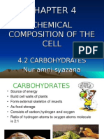 4.2 Carbohydrates