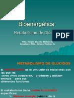 Bioenergética - metabolismo glucosa
