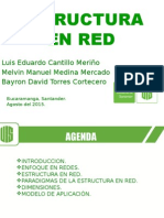 Exposicion Estructuras en Red