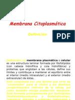 Membrana Citoplasmática.BIOL.