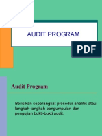 Audit Program