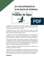 noticia33_MUDAS_PIPIRIPAU