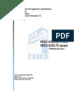 PVSS1.pdf