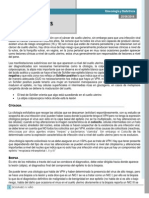 Tema 9 - Infecciones Virales (Miércoles 25-06-2014)