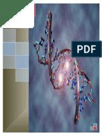 LA-GENETICA.docx