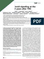 Endocannabinoid Signalling