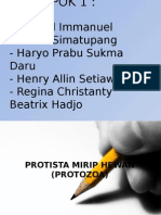 Protista Mirip Hewan (Protozoa) - materi kelas x
