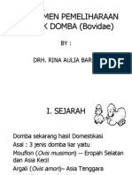 Manajemen Pemeliharaan Ternak Domba (Bovidae)