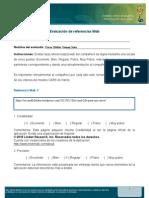 evaluacic3b3n-referencias-web