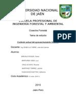 Universidad Nacional de Jaé1